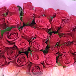 rose-mean03